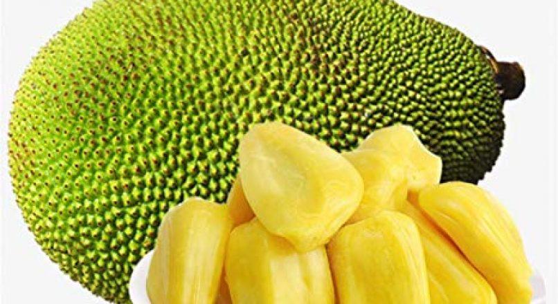Benefits of Jackfruit – ചക്കയുടെ ഗുണങ്ങൾ