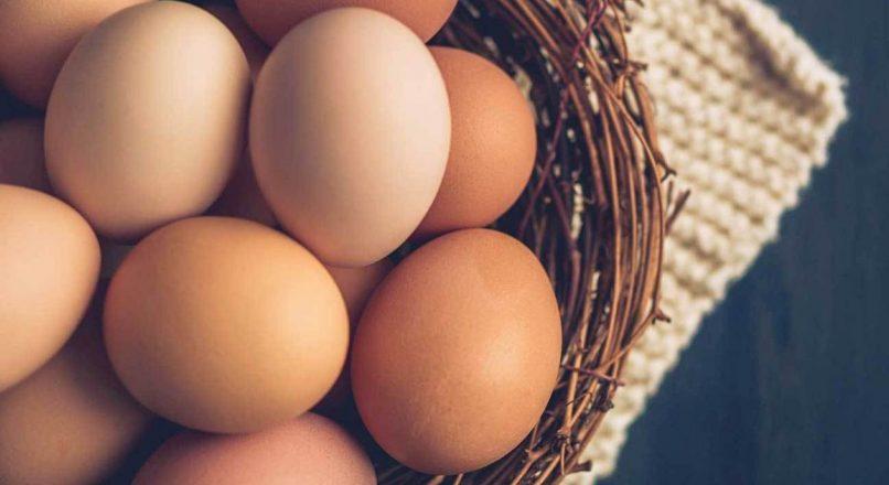 Benefits of Eggs – കോഴി മുട്ടയുടെ ഗുണങ്ങൾ – കോഴി മുട്ട Kozhi Muttayude Gunangal