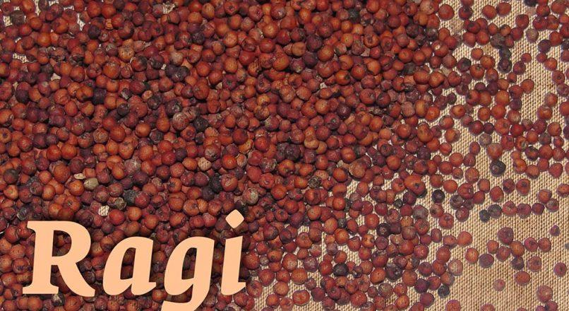 Benefits of Ragi റാഗി – റാഗിയുട ഗുണങ്ങൾ – Ragiyude Gunangal