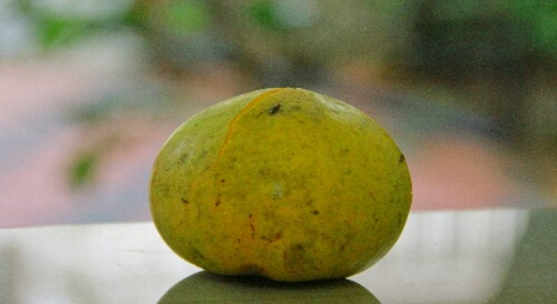 Benefits of Egg Fruit – Muttapazham മുട്ടപ്പഴം – മുട്ടപ്പഴത്തിൻറ്റെ ഗുണങ്ങൾ – Muttapazhathinte gunangal