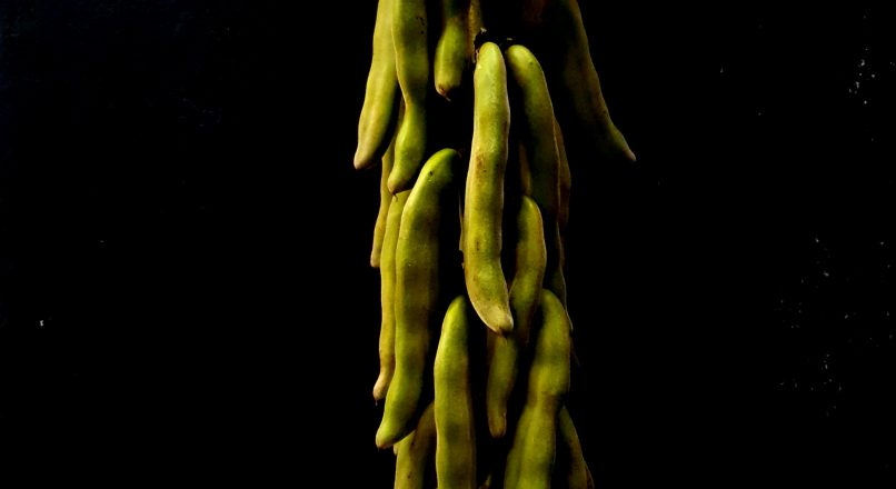 Benefits of Soybean – സോയാബീനിന്റ്റെ ഗുണങ്ങൾ– Soybeaninte Gunangal